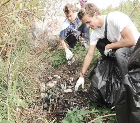 уборка территории от мусора, старых пней и деревьев